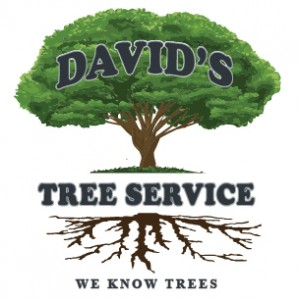 David's Tree Service is Exhibiting at Orange County's Largest Mixer